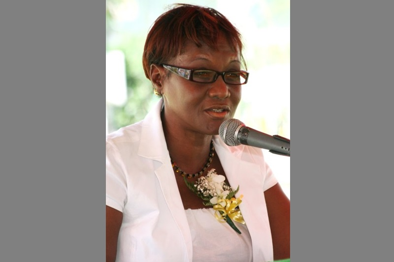 MP running out of patience with Holness