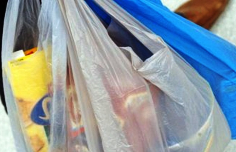 Private sector chided | PM to announce plastic bag clampdown